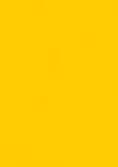 Logo SSI Kopf